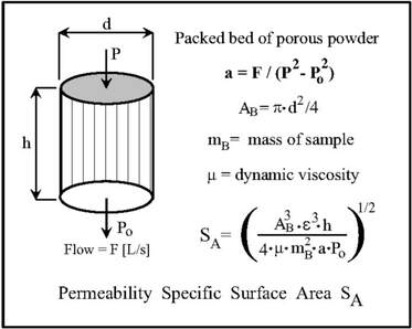 Specific Surface Area of Permeability